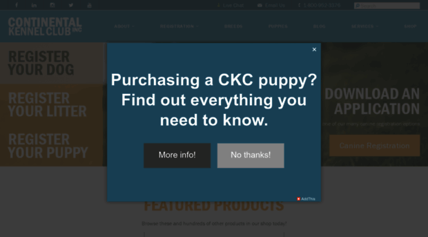 ckcusa com - Continental Kennel Club | CKC Dog Registration