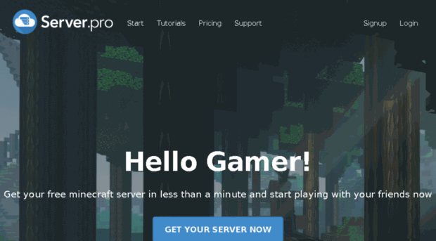 Server.pro free minecraft server hosting