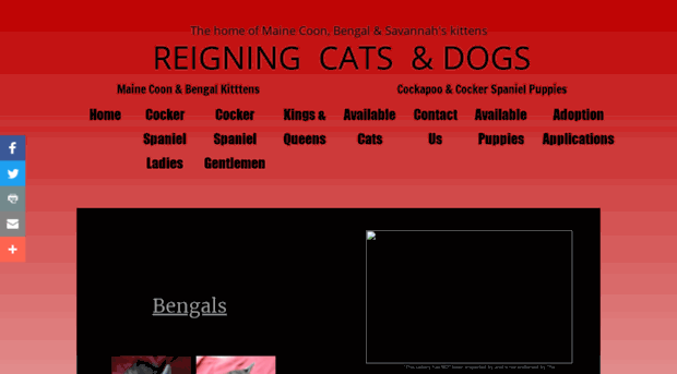 reigningcatsndogsinca com - Reigning Cats & Dogs in Califo