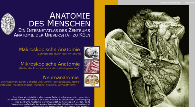 Anatomie Uni Köln