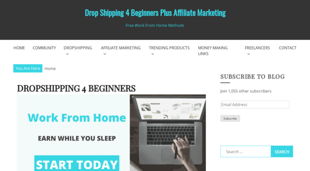dropshipping4beginners.com