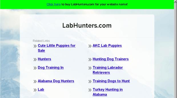 labhunters.com